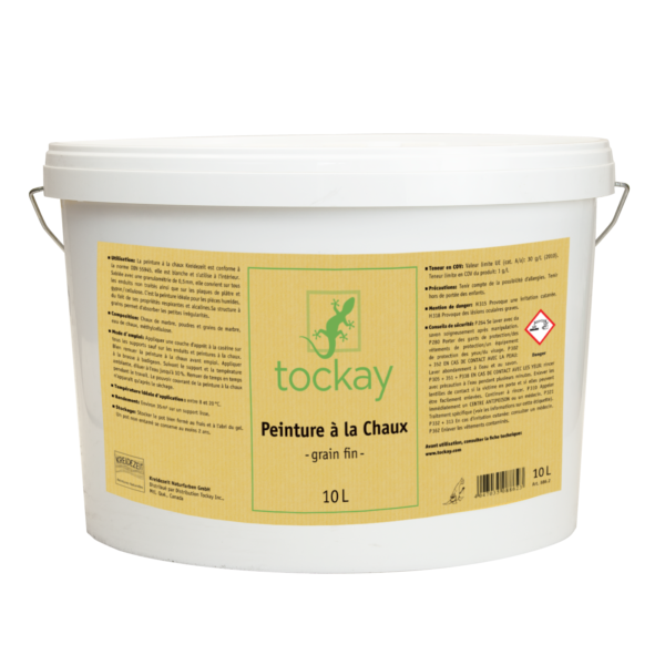 Tockay Lime Paint – Textured